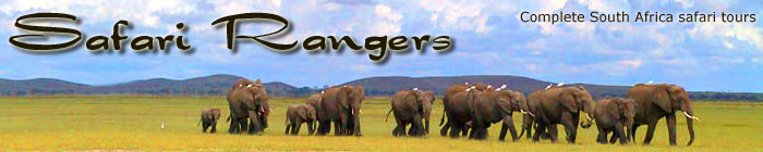 South Africa Safari - Safari in South Africa - Safari Rangers
